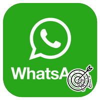 Реклама через WhatsApp, как запустить. Отзывы о сервисе