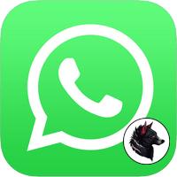 Аватарки для WhatsApp - скачать прикольные, для девушек и мужчин
