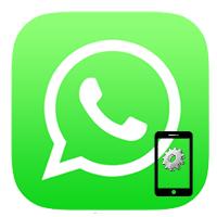 Как настроить WhatsApp на телефоне. Инструкция пользователя