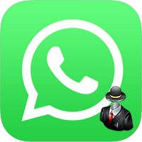 Как в WhatsApp сделать невидимку