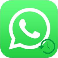 Как восстановить WhatsApp на телефоне после удаления, через резервную копию