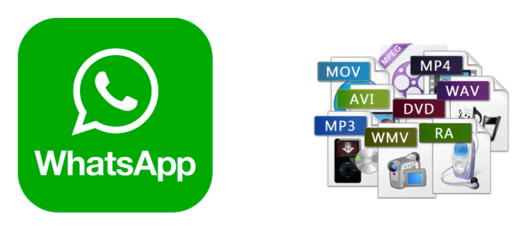 Какой формат видео поддерживает WhatsApp