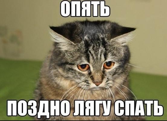 Прикольные картинки на аватар Ватсап2