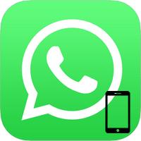 Скачать WhatsApp бесплатно на телефон