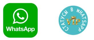 Статусы в WhatsApp. Как посмотреть, установить статус